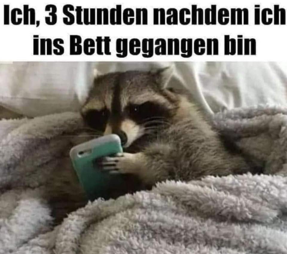 Lustig whatsapp profilbilder für Lustige Gifs